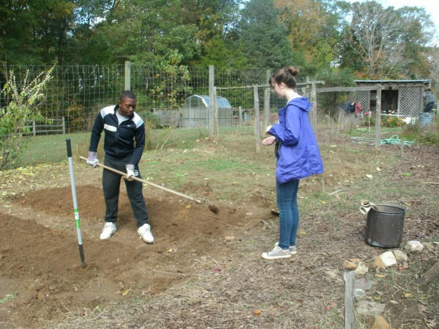 Early College students Gregory Foreman, Jr. and Melissa Nance volunteer at the Guilford garden. They were among the many students to participate in Rooting Ourselves in Greensboro. (Colleen Gonzalez/Guilfordian)