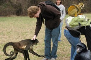 GOOFORDIAN: Guilford purchases therapeutic spider monkeys for campus