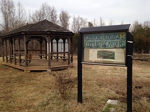 Community gardens meet different needs