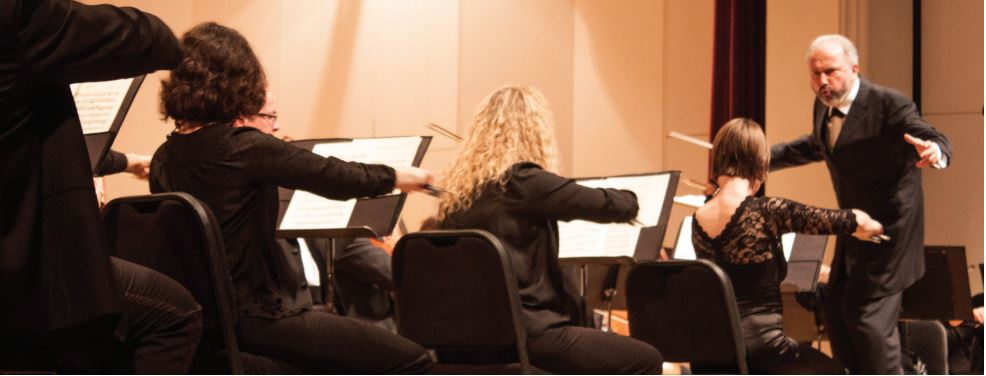 Conductor and music director, Dmitry Sitkovetsky, leads the Greensboro Symphony Orchestra during their performance of classical Mozart pieces this past Saturday Nov. 5.