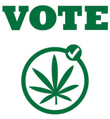 States vote pot this election