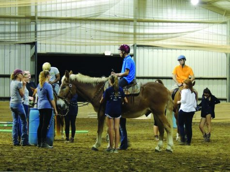 Horsepower: organization changes lives one ride at a time