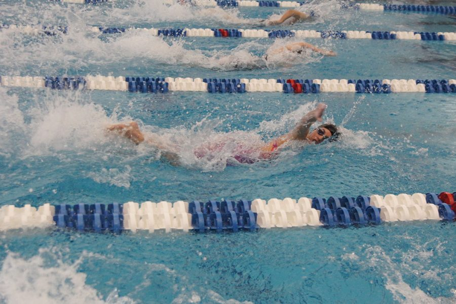 Guilford+College+women%E2%80%99s+swimming+sophomore+swimmer+Carolyn+O%E2%80%99Halloran+races+at+the+2017+Old+Dominion+Athletic+Conference+Swimming+Championships.%2F%2F+Photo+courtesy+Guilford+Athletics.