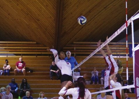Volleyball ready for ODAC Tournament