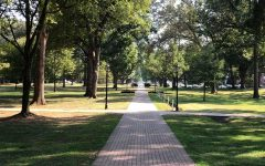 One of the many brick paths that wind through Guilford's scenic campus.