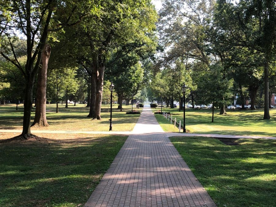 One of the many brick paths that wind through Guilfords scenic campus.