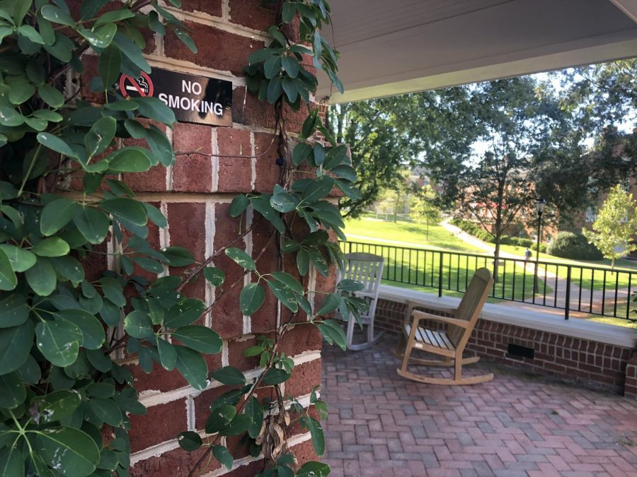 Nature overtakes the No Smoking sign in the gazebo at Founders Hall.