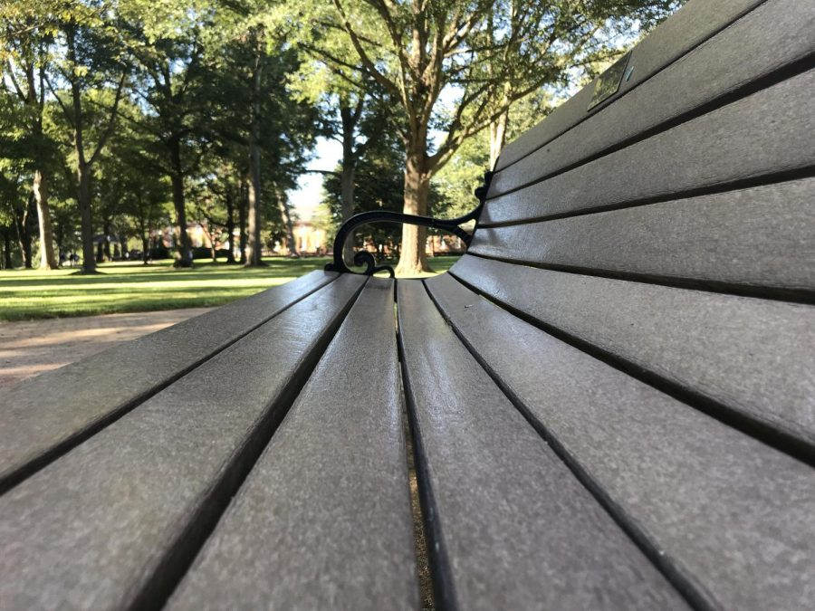 Memorial benches are ubiquitous across the main quad, but this view offers a different perspective.