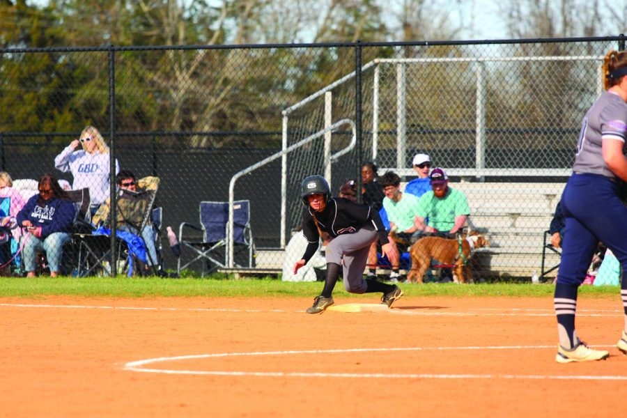 softball_1+copy