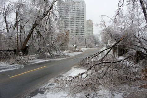 Inclement weather conditions such as fallen trees caused power outages across Greensboro.